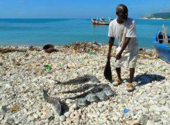 Assessment fishermen5